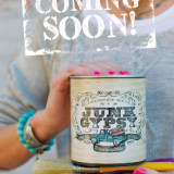 Shizzle Design is Pleased to Announce the addition of Junk Gypsy™ Paint